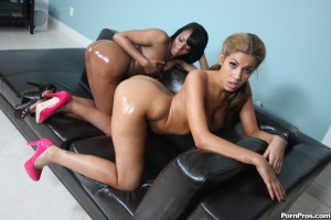 Big Oiled Asses Shaking